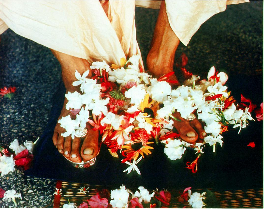 The Sublime Essence Of The Lotus Feet